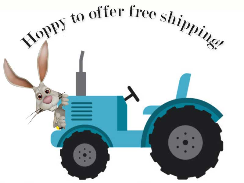 Free shipping Special – Limited Time
